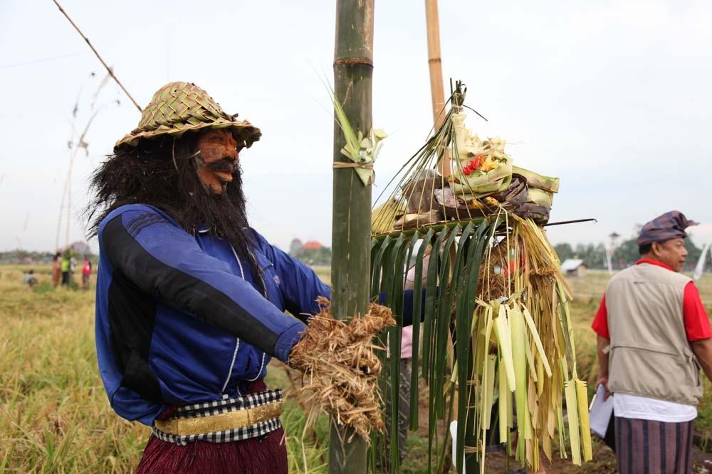 Lelakut, Hantu Orang-orangan Sawah dari Bali. Diantara rumbai-rumbai plastik yang dibentangkan dengan tali itu, anda juga akan melihat orang-orangan sawah yang terangguk-angguk ditiup angin 2